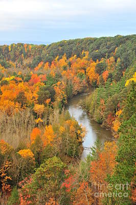North Photograph - Manistee River In Autumn by Terri Gostola