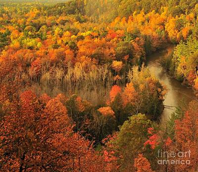 Autumn Trees Photograph - Manistee River Morning by Terri Gostola