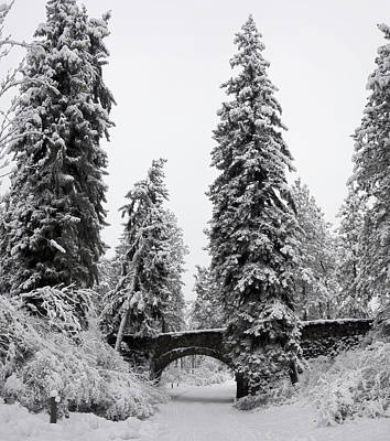 Manito Park Bridge In Winter Art Print
