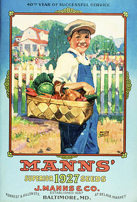 Baltimore Drawing - Manns Seed Catalog With Illustration by Vintage Design Pics