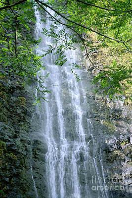 Manoa Valley Waterfall Art Print by Bill Brennan - Printscapes