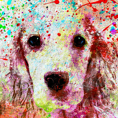 Puppy Mixed Media - Man's Best Friend  by Stacey Chiew