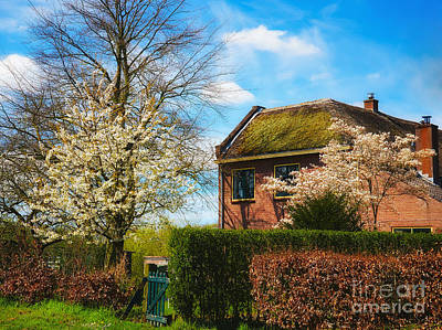 Photograph - Mansion Surrounded By Hedges And Trees With Blossoms by Nick  Biemans