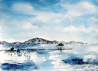Painting - Manuel Reef by Diane Kirk