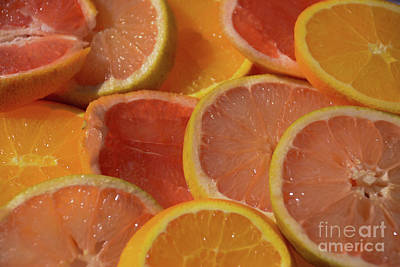 Photograph - Many Citrus Fruits - Macro by Adrian DeLeon