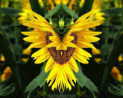 Photograph - Many Faces Of A Sunflower by Bill Swartwout