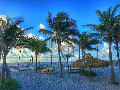 Photograph - Many Palms Delray Beach Florida  by Lawrence S Richardson Jr