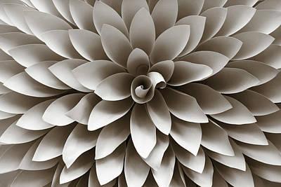 Photograph - Many Petals Dahlia by Marilyn Hunt