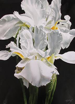 Painting - Many Shades Of White by Alfred Ng