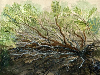 Manzanita Painting - Manzanita by Dale Jackson