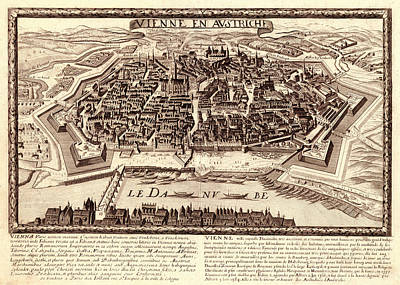 Lady Bug - Map Of Vienna 1685 by Andrew Fare
