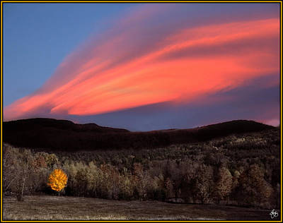 Photograph - Maple Ablaze At Sunset by Wayne King