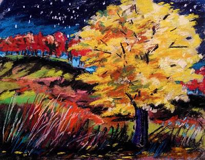 Maple At Night Art Print by John Williams