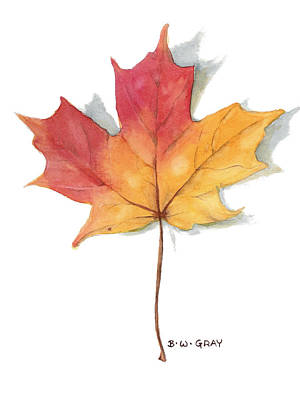 Painting - Maple Leaf by Betsy Gray
