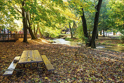 Photograph - Maple Leaves And Picnic Table by Tom Cochran