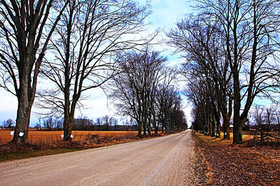 Photograph - Maple Road by Debbie Oppermann