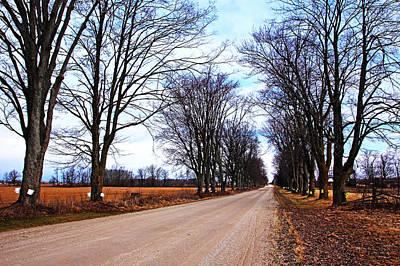 Photograph - Maple Road by Debbie Oppermann
