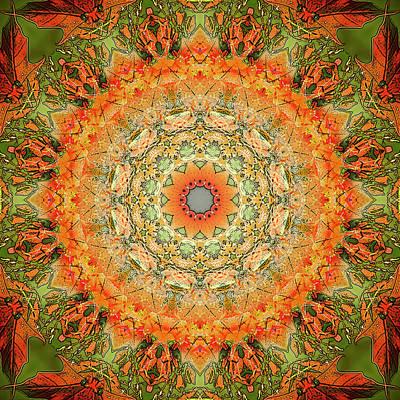 Digital Art - Maple Star by Frans Blok