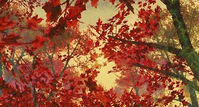 Maple Tree Sunset Original