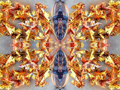Digital Art - Mapleleaf Butterfly by Max DeBeeson