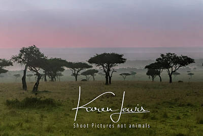 Photograph - Mara Dawn by Karen Lewis