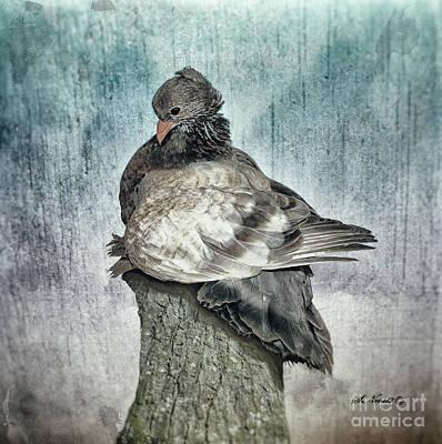 Photograph - Maragold by Shari Nees