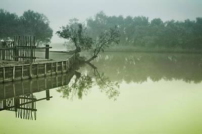 Photograph - Marais At Dawn, Camargue, France by Jean Gill