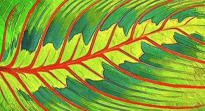 Red Leaf Digital Art - Maranta Red 2 by ABeautifulSky Photography