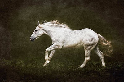Photograph - Marble Horse by Phyllis Burchett