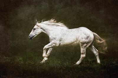 Marble Horse Art Print