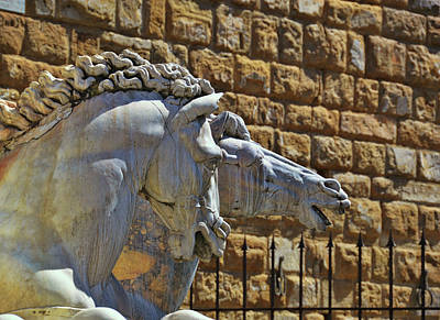 Photograph - Marble Florence Stallions by JAMART Photography