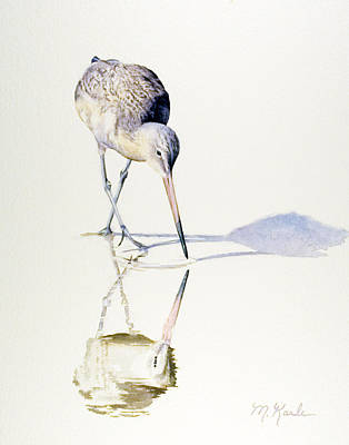Painting - Marbled Godwit Times Three by Marsha Karle