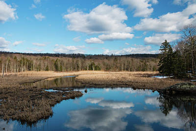 Photograph - March Afternoon At Black Creek by Jeff Severson