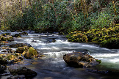 River Scenes Photograph - March Along The River by Michael Eingle
