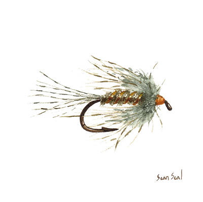 March Brown Spider Art Print by Sean Seal