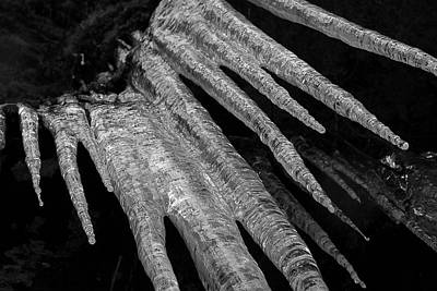 Art Print featuring the photograph March Icicles 3 by Mike Eingle