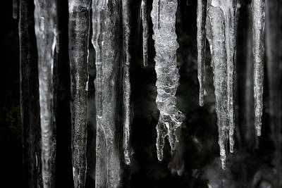Photograph - March Icicles by Mike Eingle