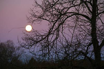 Photograph - March Moonset by Kathryn Meyer
