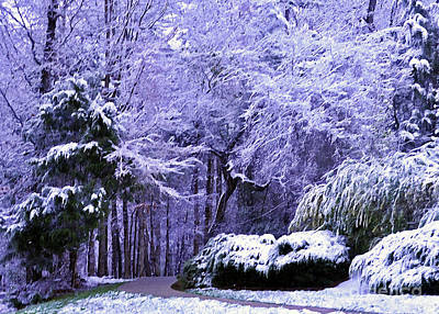 Photograph - March Snow In Carolina by Lydia Holly