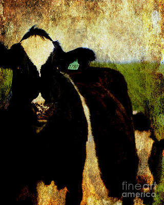Photograph - Marching Cow . Texture by Wingsdomain Art and Photography