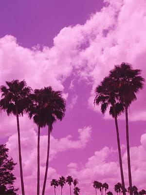 Marching Palms Original by Florene Welebny