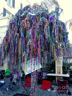 Photograph - Mardi Gras 2016 Bead Tree On St. Charles Avenue by Michael Hoard