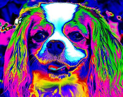 Digital Art - Mardi Gras Dog by Larry Beat