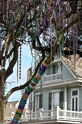 Catch Of The Day - Mardi Gras in the Trees by Sarah Stollberg