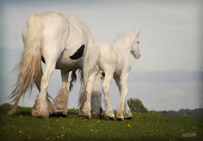 Mare And Foal Art Print by Elizabeth Sescilla