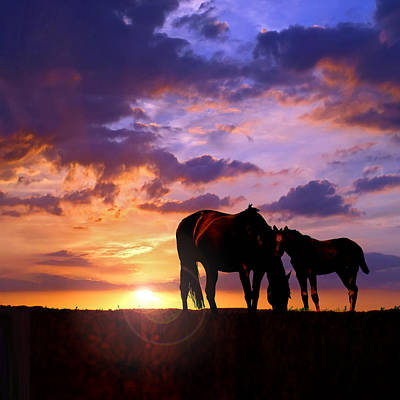 Mare And Foal Art Print by Rod Seel