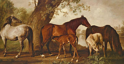 Suckling Painting - Mare And Foals by George Stubbs