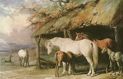 Of Horses Painting - Mares And Foals by William Barraud