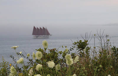 Photograph - Margaret Todd Sailing On A Foggy Evening by Living Color Photography Lorraine Lynch