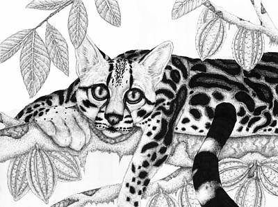 Margay Cat Drawing - Margay With Cacao Tree by Jennifer Schurr